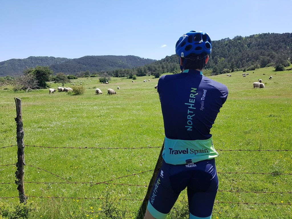 ride and learn some basque words