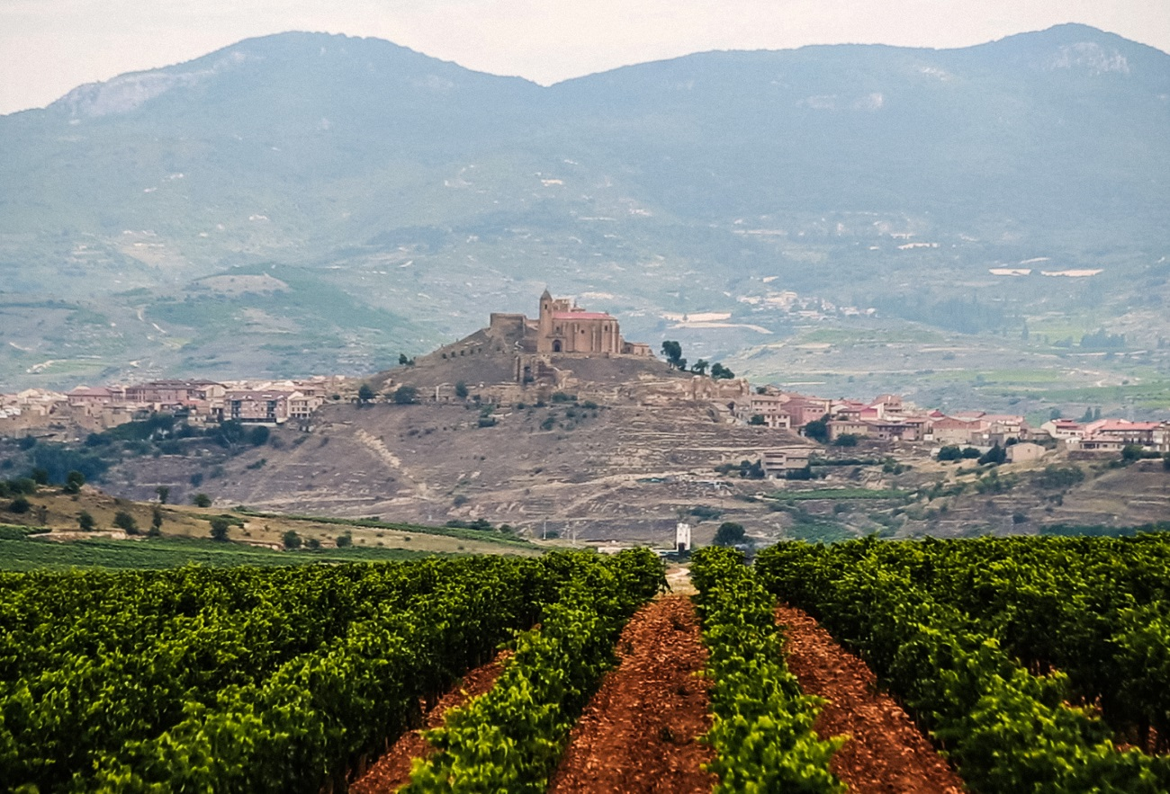 rioja to the basque coast wine region