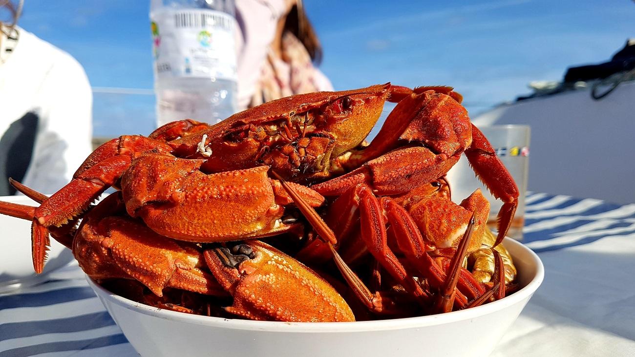 best seafood san sebastian