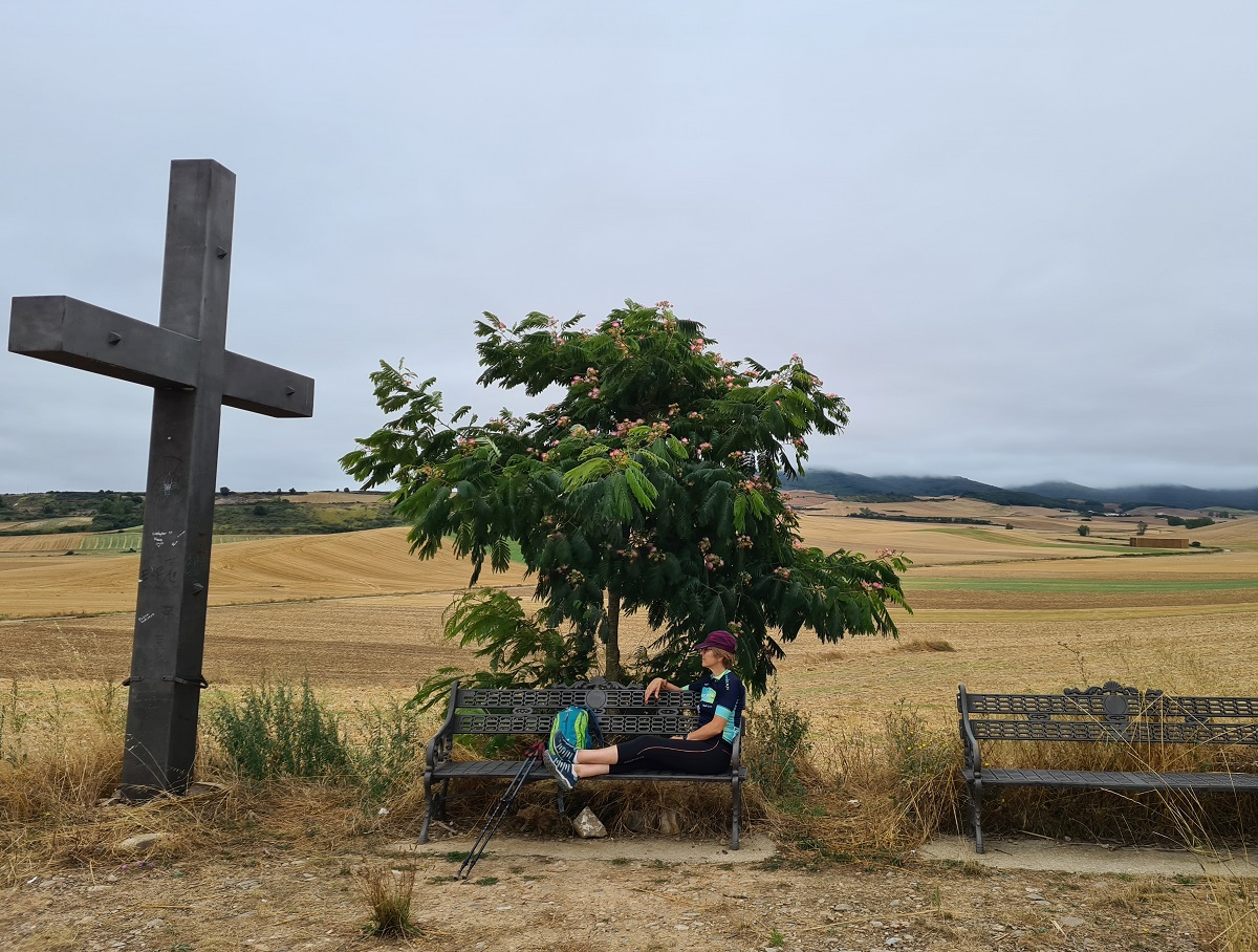 camino de santiago saint james way